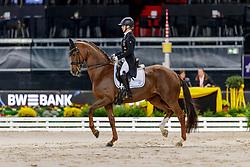BECKS Jil-Marielle (GER), Damon's Delorange<br /> Stuttgart - German Masters 2019<br /> PREIS DER LISELOTT SCHINDLING STIFTUNG ZUR FÖRDERUNG DES DRESSURREITSPORTS<br /> Piaff Förderpreis Finale<br /> Nat. Dressurprüfung Kl. S***<br /> Grand Prix<br /> 15. November 2019<br /> © www.sportfotos-lafrentz.de/Stefan Lafrentz