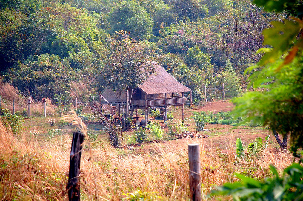 village in South Laos Paksong