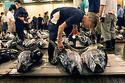 "A buyer at the world's biggest fish Market in Tsukiji, Tokyo looks at large tuna prior to auction at the market. More than 2,300 tons of fish -- about one-third of the total consumed in Japan -- passes through Tsukiji each day and offers more than 450 varieties of marine products. The market, which dates back almost 75, will move to a high-tech site on a man-made island in Toyosu, which is well-documented as being contaminated with benizine. Not that Tsukiji is much better off -- many buildings in the aging site are stuffed with asbestos. ""Choose your poison,"" says one Tsukiji official. The new site, which the government plans to be readied by 2012, will be significantly larger, with more room for off-loading and for sellers to display their goods. The current location, says one official, is too cramped and collisions between motorised carts and pedestrians means accidents occur almost daily. Meanwhile, with fish sales down, it is becoming more difficult to justify Tsukiji's prime location and property developers are keeping a close watch on Tsukiji land, which is just a few blocks from the ritzy Ginza district of Tokyo, where per-meter land prices are the highest in the world...The move to the new Toyosu location, meanwhile, has been at the center of heated debate -- clean-up operations alone are estimated to cost ¥67 billion (around US$660 million), with a further ¥450 billion to build a new marketplace. Big wholesalers favour the move, but the 1,600-plus merchants mostly are against it. Yoshiharu Kiku, a Tsukiji storeowner who began working at the market 60 years ago, expresses bewilderment at the plans, saying that the name Tsukiji itself has become synonymous with the world's best and most eclectic selection of fish. ""This place has a long tradition. Why break it and start from scratch all over again?"" he says."