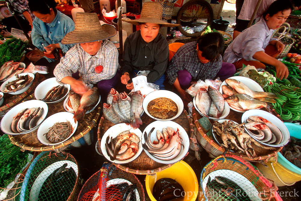THAILAND, NORTH, GOLDEN TRIANGLE Chiang Mai, busy Warrot market location for exotic produce and street food, fish and frogs for sale