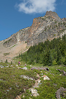 Hikers on Easy Pass Trail, North Cascades Washington