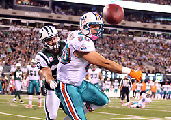 October 17, 2011; East Rutherford, NJ, USA; New York Jets safety Eric Smith (33) breaks up a pass intended for Miami Dolphins tight end Anthony Fasano (80) during the first half at the New Meadowlands Stadium.