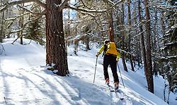 THEMENBILD - Tourengeher im Lärchenwald während einer Skitour zum Kals Matreier Törl. Kals am Großglockner, Österreich am Donnerstag, 8. März 2018 // tourer in the larch forest during a ski tour to the Kals Matreier Törl. Thursday, March 8, 2018 in Kals am Grossglockner, Austria. EXPA Pictures © 2018, PhotoCredit: EXPA/ Johann Groder