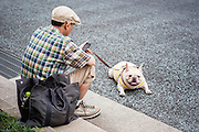 Man and his dog sat on the pavemente in Ginza (Tokyo, Japan)