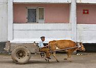 Daily life in Hamhung, North Korea.