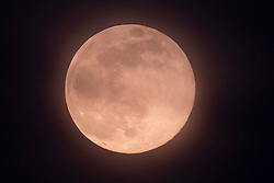 © Licensed to London News Pictures. 07/04/2020. London, UK. A near full supermoon rises overLondon. Also know as the Pink Moon at this time of year - it will be at it's fullest as it 3:34am tomorrow. A supermoon is a full or new moon that comes closet to the Earth in its elliptical orbit—resulting in a slightly larger than usual apparent size when viewed from Earth. Photo credit: Ben Cawthra/LNP