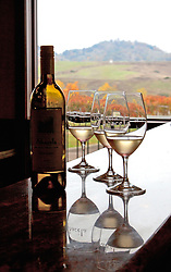 A pour of  Albarino, a prize-winning white wine,  awaits Fall visitors at the tasting counter of Abacela Winery, Roseburg, Oregon.  Abacela pioneered the production of this wine in America.