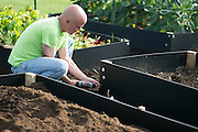 Paul Frolick helps assemble additional garden beds at St. George's Church during Make a Difference Day in Hilton on Saturday, October 25, 2014. The garden produced 700 pounds of food this year for the Hilton Parma Emergency Food Shelf, and four additional beds were added Saturday.