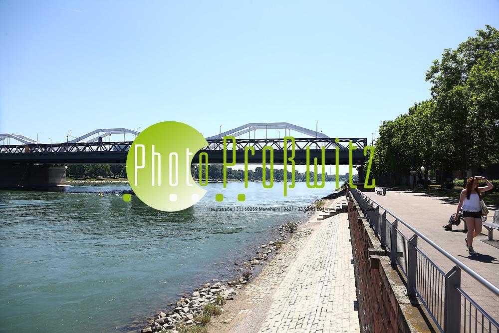 Ludwigshafen. 05.06.15 Rhein. Bootsanlegestelle soll errichtet werden.<br /> <br /> Bild: Markus Pro&szlig;witz 05JUN15 /masterpress