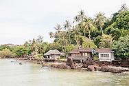 Koh Mak island, Trat Province, Thailand, Areca nut