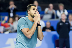February 8, 2019 - Montpellier, France, FRANCE - joie de Jo Wilfried Tsonga  (Credit Image: © Panoramic via ZUMA Press)