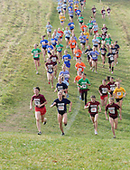 Warwick, N.Y. - Runners start up a hill during the  girls' Class AA race at the New York State Public High School Athletic Association championships at Sanfordville Elementary School on Nov. 11, 2006.<br />