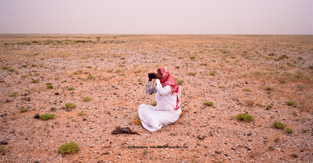 Sheikh Jaber Alamrah keeping an eye on his herd of camels in the Dahana Sands, Saudi Arabia