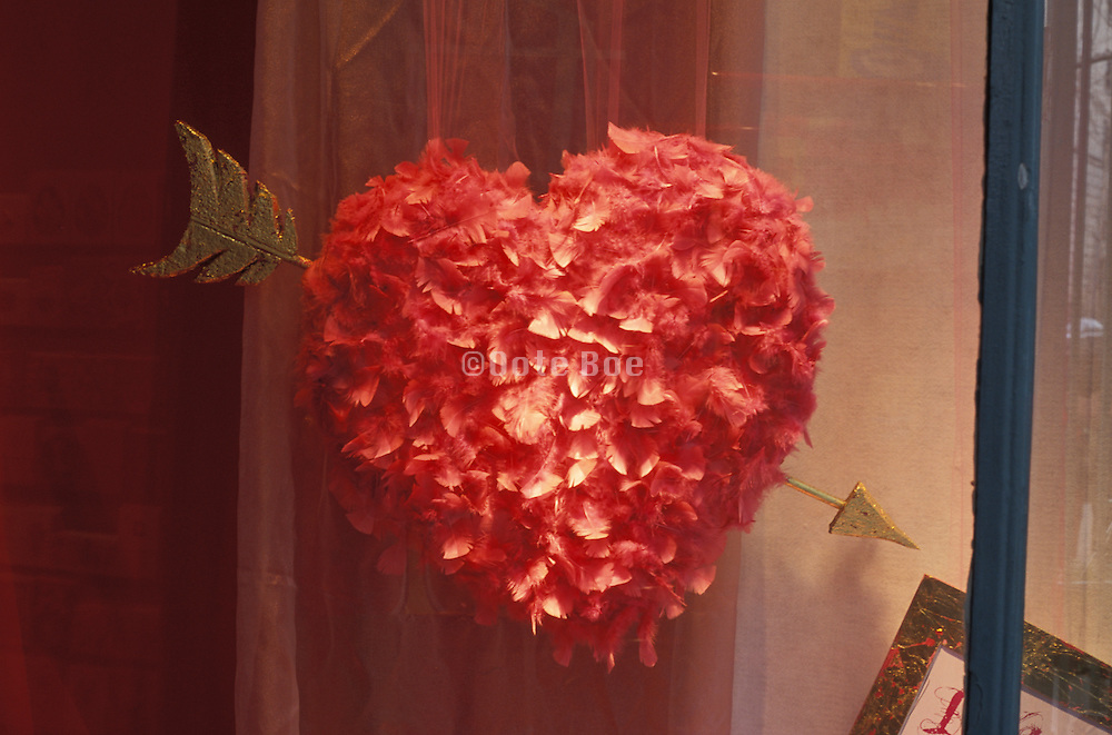 Heart made of red feathers with an arrow through it