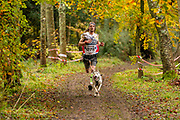 Male competitor in canicross class during the WSA Dryland World Championship 2019 at Firle Country Estate in the South Downs National Park, Lewes, Sussex, United Kingdom on 17 November 2019.