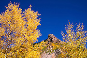 Fall color along the Million Dollar Highway near Silverton, San Juan National Forest, Colorado USA