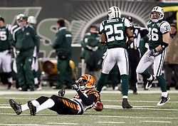 Jan 3, 2010; East Rutherford, NJ, USA; New York Jets safety Kerry Rhodes (25) and New York Jets safety Jim Leonhard (36) celebrate a dropped pass by Cincinnati Bengals wide receiver Chad Ochocinco (85) during the first half at Giants Stadium.