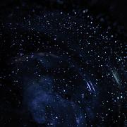 6 | Galaxies