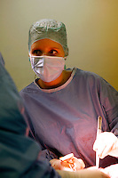Operation to remove a deceased donor's liver and kidneys for later transplantHospital St. LouisParis