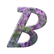 The Capitol Letter B Part of a set of letters, Numbers and symbols of 3D Alphabet made with a floral image on white background