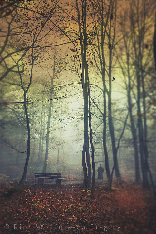 Autumn scene with a man standing beside a bench on a misty morning