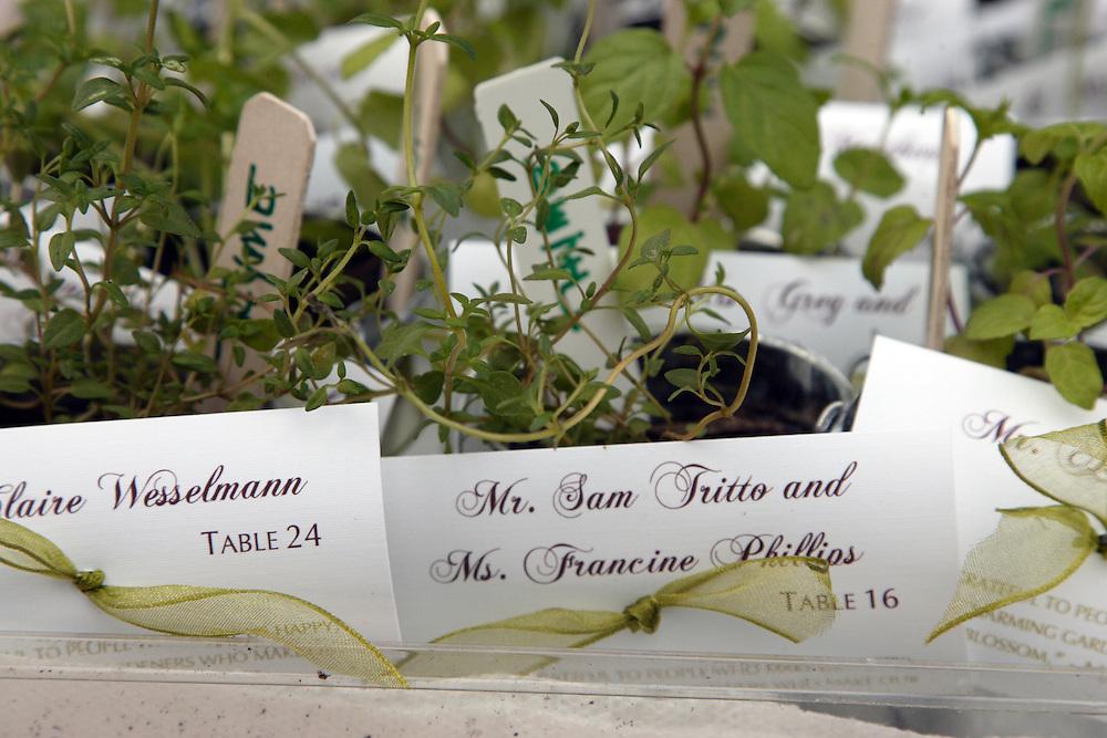 Sage Pots Name Placement