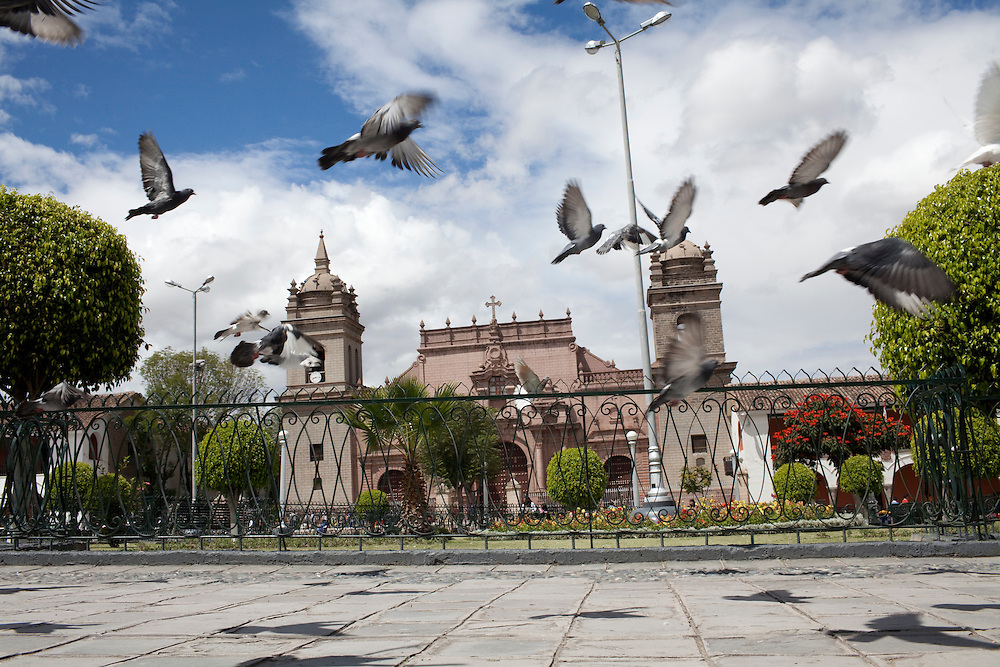 Pigeons fly near a cathedral on Wednesday, Apr. 15, 2009 in Ayacucho, Peru.
