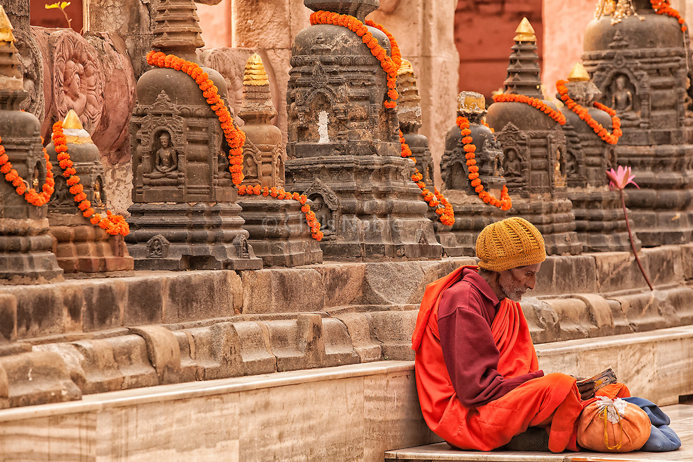 Buddhist monk studying at the Mahabodhi Temple, the place of the Buddha's enlightenment in Bodhgaya India.