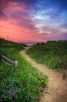 Kitty Hawk path to the beach at twilight, lit with a flashlight, on the Outer banks.