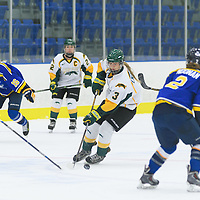 1st year forward Elise Endicott (3) of the Regina Cougars in action during the Women's Hockey Home Game on October 15 at Co-operators arena. Credit: Arthur Ward/Arthur Images