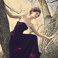 A short haired woman sits in a leafless tree wearing a dark maroon dress, a clear blue sky behind her.