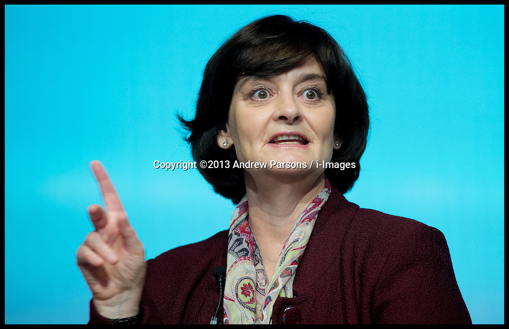 Former Prime Minister Tony Blair's wife Cherie Blair Speaking at the launch of Visible Women Connects, a new online mentoring service for women, Cherie Blair said the Tory Party needs more women, adding 'But they do have more than the Lib Dems.'. London, United Kingdom. Thursday, 21st November 2013. Picture by Andrew Parsons / i-Images