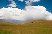 Thunderstorm over Zumwalt Prairie, a Nature Conservancy preserve in northeastern Oregon