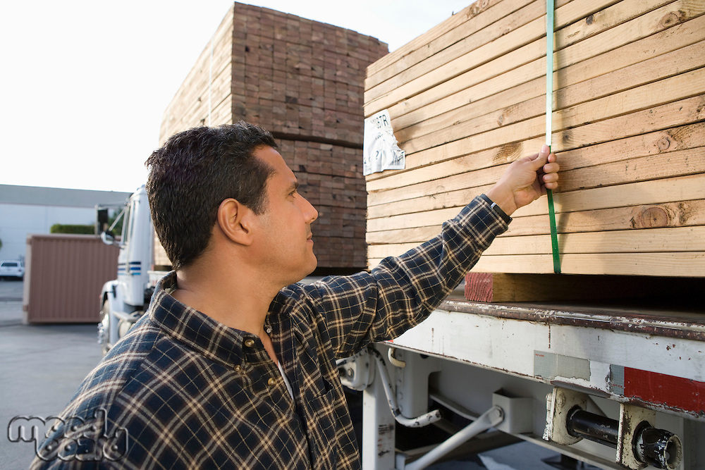 Mid-adult man checking truck loaded with wood