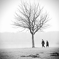 Elderly couple wearing winter clothing walking past a bare tree