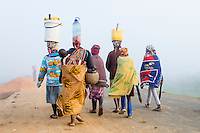 African ladies walking to fetch water in the mist at dawn, Maputo Province, Limpopo Floodplain, Mozambique