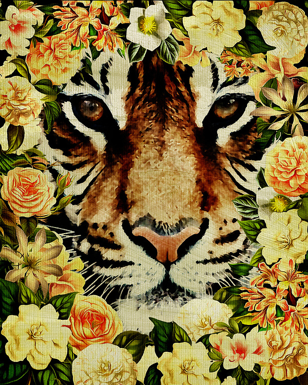 When you imagine an animal as striking and powerful as the tiger, you generally don't imagine such a creature surrounded by flowers. Yet that is indeed the case in this absolutely enchanting fine art offering by illustrator Jan Keteleer. The detail of the tiger is second only to the stunning detail to be found in the flowers themselves. –<br />