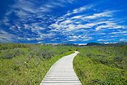 Boardwalk at Western Brook Pond<br /> Gros Morne National Park<br /> Newfoundland & Labrador<br /> Canada