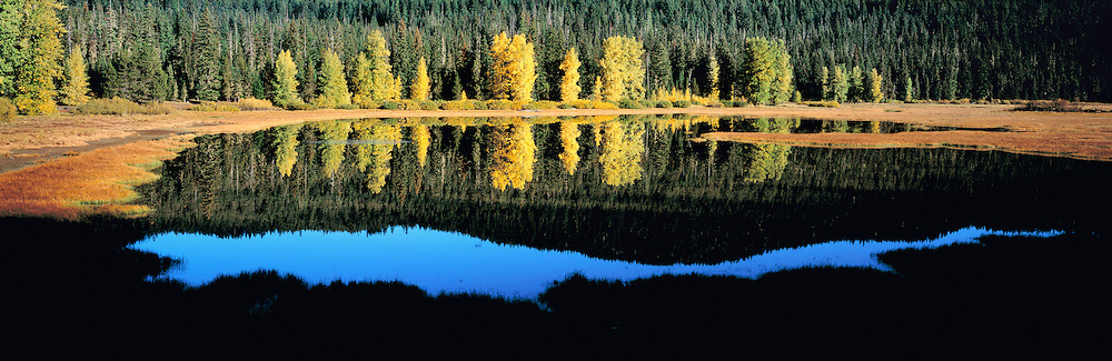 Golden cottonwood trees reflect in the diminishing autumn waters of Lost Lake, near the summit of Santiam Pass, in the Oregon Cascades. ©Ric Ergenbright