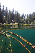 Stand up paddle ,British Columbia,Canada,SUP,Canada,<br /> surf photography,<br /> stand up paddle,<br /> photographie de surf,<br /> surf photos,<br /> surf photo,<br /> Stand up paddle,<br /> paddle boards,<br /> paddle surf,<br /> paddle surfboard,<br /> paddleboard,<br /> paddleboarding,<br /> paddleboards,<br /> stand up paddle,<br /> stand up paddle board,<br /> stand up paddle boarding,<br /> stand up paddle boards,<br /> stand up paddle surf,<br /> stand up paddle surfboard,<br /> stand up paddle surfboards,<br /> stand up paddleboard,<br /> stand up paddleboards,<br /> stand up paddles,<br /> stand up paddling,<br /> stand up surf,<br /> stand up surfboards,<br /> standup paddle,