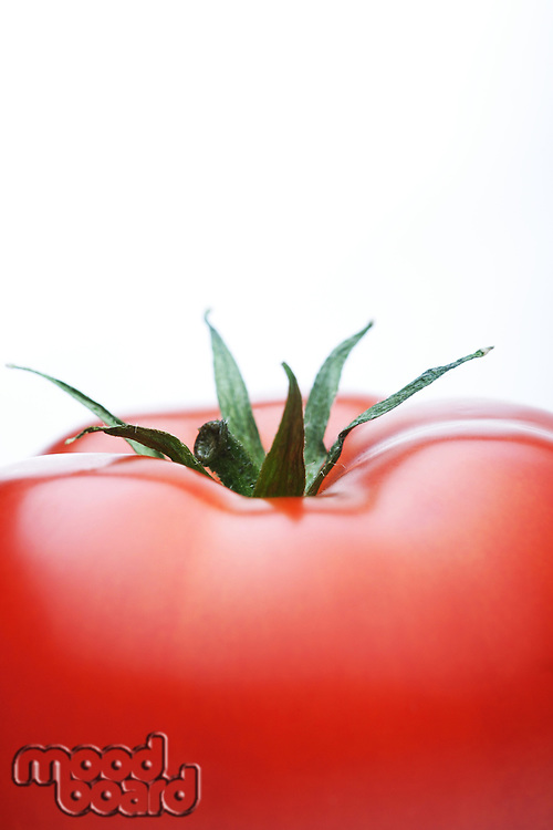 Close-up of tomatoes on white background