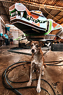 Puppy Moleque, in the workshop of the master João do Som in Marituba, periphery of Belém do Pará, 2017. The new Prime Crocodile is about to be launched, missing only the finishing touches. The largest soundmachine of the Pará scene, nine meters long, from head to tail. /// Cachorro Moleque. Ateliê do mestre João do Som em Marituba, periferia de Belém do Pará, 2017. O novo Crocodilo Prime está preste à ser lançado, faltam os últimos retoques. é a maior aparelhagem da cena paraense, com nove metros de comprimento, da cabeça até a cauda.