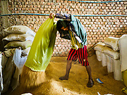 "21 NOVEMBER 2017 - WAKEMA, AYEYARWADY REGION, MYANMAR:  Workers feed sacks of paddy rice (paddy rice is unprocessed rice) into a processing line at a rice mill in the Ayeyarwady  Delta. Myanmar is the world's sixth largest rice producer and more than half of Myanmar's arable land is used for rice cultivation. The Ayeyarwady Delta is the most important rice growing region and is sometimes called ""Myanmar's Granary."" The UN Food and Agriculture Organization (FAO) is predicting that the 2017 harvest will increase over 2016 and that exports will surge to 1.8 million tonnes.  PHOTO BY JACK KURTZ"