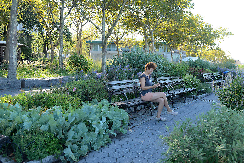 Woman sitting on Park bench in Battery Park,New York, Manhattan, USA<br /> Model release 0009