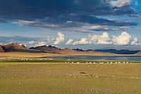 Mongolie. Province de Bayan Olgii. Campement de yourte au lac Bayan Nuur près dans le parc national de Tsambagarav. Population Kazak. // Mongolia. Bayan Olgii province. Yurt camp near the Bayan Nuur lake on the Tsambagarav National Parc. Kazak population.