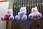 Uzbekistan, Samarqand. Teddybears.
