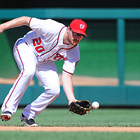28 August 2016: Washington Nationals second baseman Daniel Murphy (20) fields a ground ball against the Colorado Rockies at Nationals Park in Washington, D.C. where the Colorado Rockies defeated the Washington Nationals, 5-3.(Photograph by Mark Goldman/Icon Sportswire)