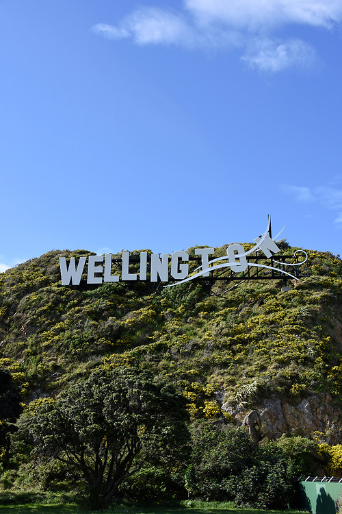 Welcome to Wellington sign on the hillside