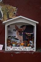 Shrine to a dog on a DUMBO street in Brooklyn New York