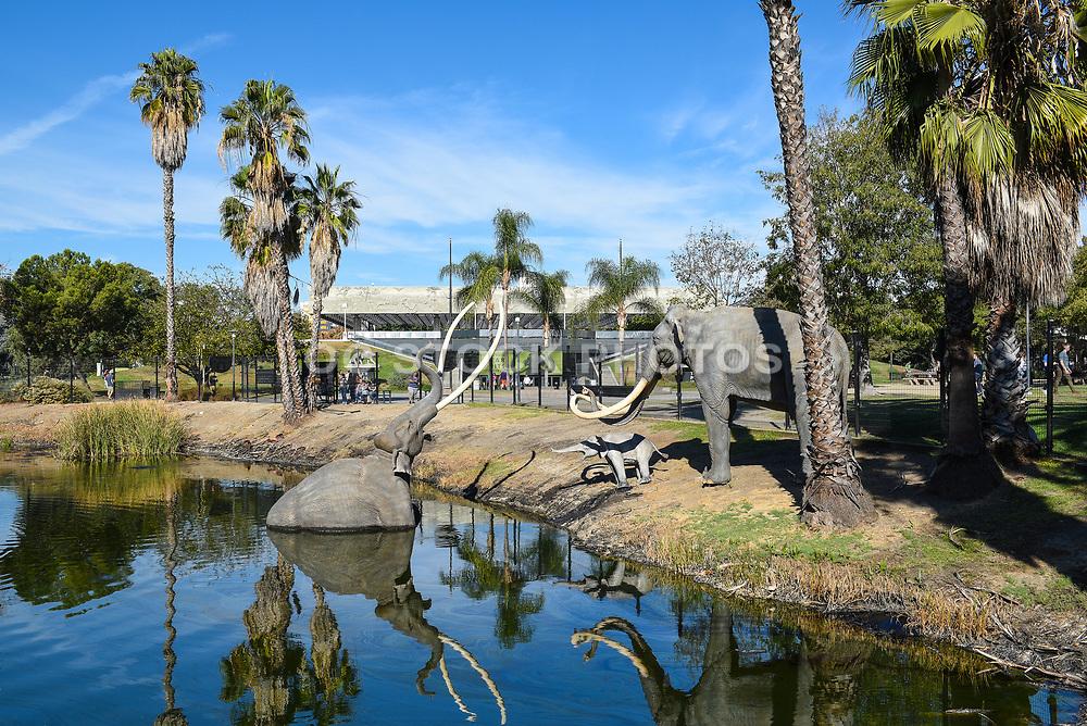 La Brea Tar Pits Lake Display